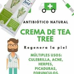 Tea Tree, Diy And Crafts, Essential Oils, Plates, Mariana, Health And Wellness, Aromatherapy