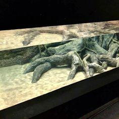 "AQUATERRA Naturalistic 3D Aquarium Background Rainforest 72/""x24/"""