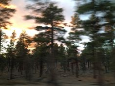 "shenori:  ""This photo on the way home from the Grand Canyon is prettier than any of the ones I took there 3:  """