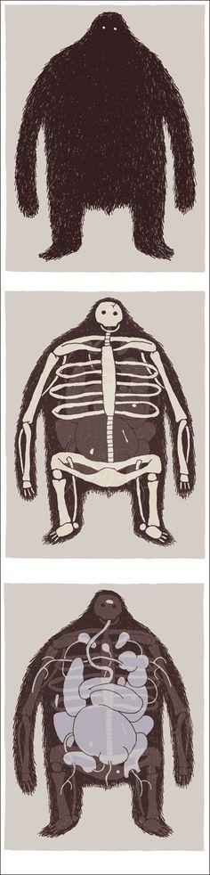 anatomy. cabanon press.