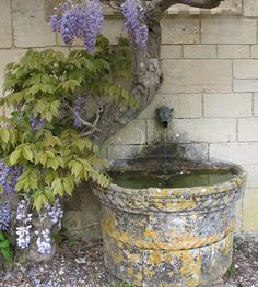 Peto Garden at Iford Manor, near Bradford-on-Avon (as seen on Big Dreams Small spaces:) fountain not visible but heard: keeps wanting to look onwards and keep water to pool distance low as creates deeper tone of water sound/fall Moss Garden, Terrace Garden, Garden Stones, Water Garden, Garden Pots, Garden Ideas, Vita Sackville West, Gaudi, Monet