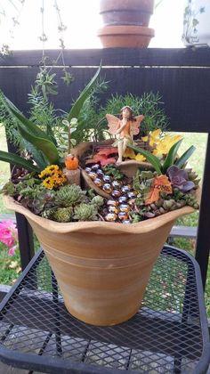 my fairy garden, container gardening, gardening