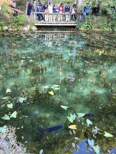 Fantastic Pond, Nemichi-jinja shrine, Seki, Gifu pref. Japan 根道神社 岐阜県関市板取