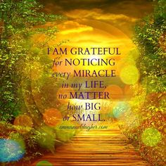 I am grateful for noticing every miracle in my life. No matter how big or small. Gratitude Quotes, Attitude Of Gratitude, Gratitude Jar, Practice Gratitude, Law Of Attraction Affirmations, Wealth Affirmations, Positive Thoughts, Positive Quotes, Positive Life