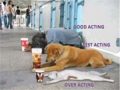 "hahahahah ... ""over acting"" :D"