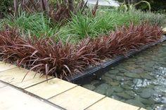New Zealand contemporary gardens