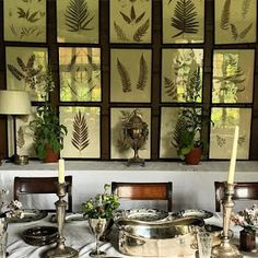 Hydrangea Hill Cottage: Moodboard Monday - Fond of Ferns Fern Wallpaper, Room Wallpaper, Kips Bay Showhouse, Nature Decor, Ferns, Great Rooms, Hydrangea, Beautiful Homes, Gallery Wall