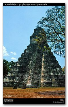 Tikal Guatemala -- Repinned by Gold Suites Vacation rentals. Where are you going? #travel http://www.goldsuites.com