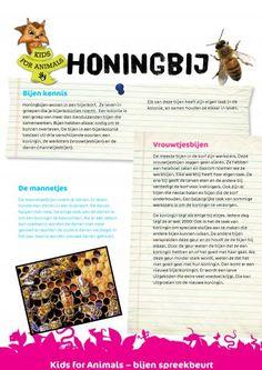 Honingbij. Wist je dat bijen honing maken met de nectar van bloemen? Leer nog veel meer over bijen met deze spreekbeurt.