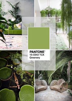 Watch Pantone Greenery, a zesty yellow-green shade that evokes the first days of Spring, in action. Love this green for patio. Color 2017, Color Of The Year 2017 Pantone, Pantone Color, Interior Design Trends, Home Decor Trends, Colour Schemes, Color Trends, Colour Palettes, Color Combinations