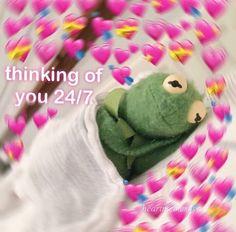 Credit to ! love thinking thinkingaboutyou post edit edit editor beauty life me kermit sleeping Funny Kermit Memes, Cute Cat Memes, Cute Love Memes, Cartoon Memes, Sapo Kermit, Sapo Meme, Love You Meme, Flirty Memes, Response Memes