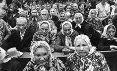 Seirijai (Romualdas Požerskis, 1981 m.)