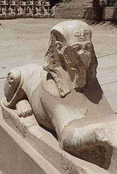Ancient Artefacts, Luxor, Ancient Egypt, Love Art, Middle East, Mount Rushmore, Past, Lion Sculpture, Statue