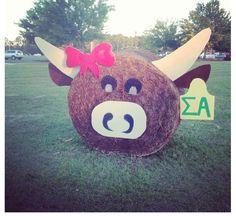 Look Sigma Alpha Beta Nu's hay bale! Hay Bale Decorations, Show Cattle, Barn Dance, Alpha Sigma Alpha, Hay Bales, Kids Zone, Ffa, Livestock, Yard Art