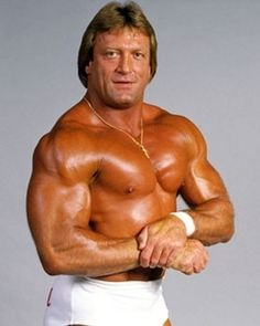 Mister Wonderful Paul Orndorff, #wrestling legend