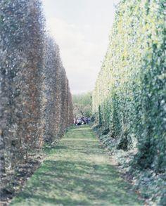 by Orie Ichihashi Ikko, Garden Of Eden, Exhibition, Country Roads, Journey, Waves, Scene, Japan, World