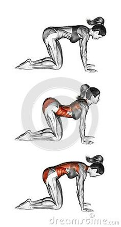 All About Abs – 66 Exercises in Pictures! Bodybuilding, Calisthenics & Yoga (Part - Page 4 of 4 - The Health Science Journal - Grand Fitness Best Ab Workout, Abs Workout For Women, Ab Workouts, Yoga Exercises, Yoga Abs, Mens Fitness, Fitness Tips, Health Fitness, Gym Fitness