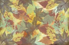 Autumn Leaves Abstract Canvas Print