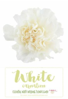 Types of white weddi