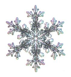 Real Snowflakes have 6 points and no two are alike; each unique...kind of like people.