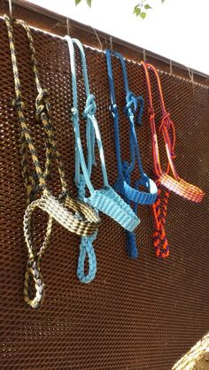 Paracord horse halters