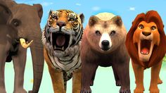 Animal Cartoons Finger Family Rhymes For Children | Lion Bear Elephant T...