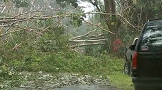 Hilo was largely spared by Hurricane Iselle, but parts of Puna were not so lucky.