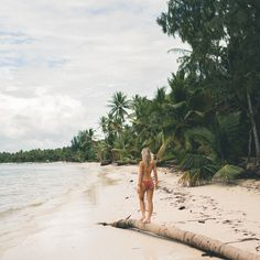 White sand beaches and palm trees, Dominican Republic | Clear Blue Water in Punta Cana | Tropical Paradise Beach Getaways in the Caribbean | Islands Near North America