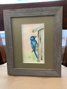 A cute bluebird #art #artwork #matboard Big Photo, Photo Contest, Blue Bird, Display, Frame, Artist, Artwork, Color, Floor Space