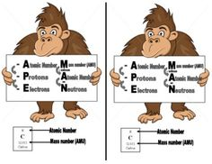 ATOM APE MAN ATOMIC MNEMONIC FOR PROTONS, NEUTRONS, & ELECTRONS - TeachersPayTeachers.com