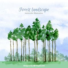 Watercolor high trees background Free Vector