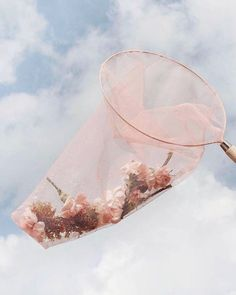 Late night idea that turned into a tulle butterfly net that turned into a photograph that turned into the She Was Caught print. Angel Aesthetic, Flower Aesthetic, Aesthetic Collage, Aesthetic Vintage, Aesthetic Photo, Aesthetic Pictures, Aesthetic Pastel, Aesthetic Grunge, Aesthetic Fashion