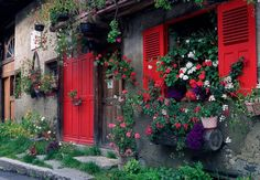 I love the doorways and windows of houses in the English countryside and in  the Mediterranean.