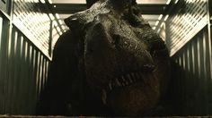 Jimmy Kimmel Footage from Jurassic World: Fallen Kingdom Shows Off An Animatronic T-Rex! Lego Jurassic World, Jurassic Park Series, Jurassic World Fallen Kingdom, Chris Pratt, Kingdom Movie, Joe Johnston, Indominus Rex, Studios, Bryce Dallas Howard