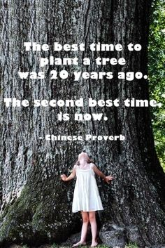 Girls Camping Trip Friends Travel Tips 56 Ideas Save Our Earth, Save The Planet, Mother Earth, Mother Nature, Environmental Issues, Nature Quotes, Go Green, Trees To Plant, Tree Planting