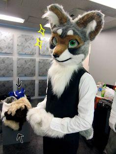 けもの fur - Google 検索