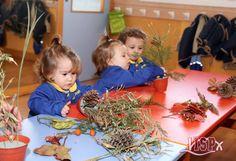 Cada uno de los alumnos de P1 #BabygardenISP ha hecho un bonito centro de otoño con elementos naturales característicos de esta época: ramas, hojas secas, piñas, palos y flores sobre una base de corcho. ¡Preciosos! Desarrollando las #InteligenciasMúltiplesISP y la #InteligenciaNaturalistaISP