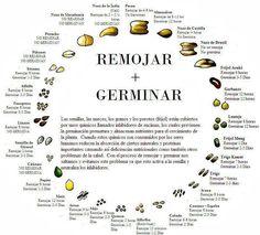 guia de germinados