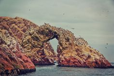 The Ballestas Islands, Paracas, Peru