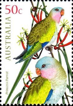 Stamps Djibouti Parrots Birds Animals Fauna Mnh Stamp Set Durable Service