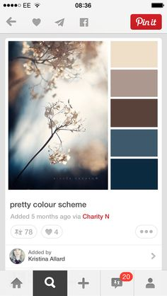 Top colour? With rich beige for rest or the room....