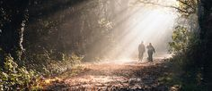 Going for a walk in the woods may lead to an aha! moment. Many people figure out creative, new ways to solve problems by allowing their minds to wander. Credit: Gavin Clarke