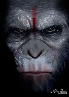HD Dawn Of The Planet Of The Apes Wallpapers and Photos HD