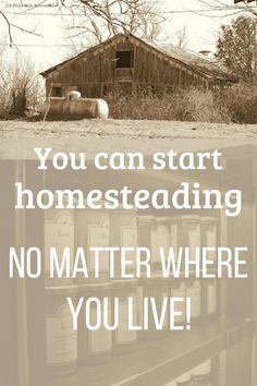 "It really doesn't matter where you live, you can begin ""homesteading"" anywhere. Grow a little food, save money, and be more self-sufficient - it's all about living a simple life, no matter where you live. Homestead Layout, Self Sufficient, Gardening For Beginners, Natural Disasters, Survival Tips, Simple Living, Zero Waste, Homesteading, Outdoor Gardens"