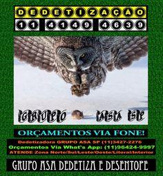 DedetizadorasSãoPaulo-11-3427-2276-Dedetização-SP