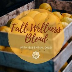 FALL IN LOVE with this blend -- made naturally with Essential Oils! Try at home in your aroma diffuser! Diffuser Diy, Diffuser Recipes, Aroma Diffuser, Cinnamon Oil, Clove Oil, Eucalyptus Oil, Lemon Oil, Autumnal, Essential Oils