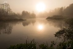 Zdjęcia z wypraw wędkarskich. Piękna scena nad wodą #wkra #rzeka