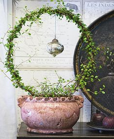 Topiary Brabourne Farm: Wreath and Ornament. Christmas Inspiration, Garden Inspiration, Deco Nature, Deco Floral, Ikebana, Garden Pots, Topiary Garden, Houseplants, Container Gardening