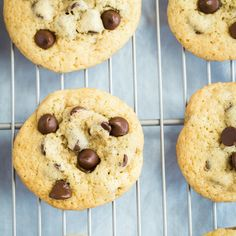 Classic Chocolate Chip Cookies are a childhood favorite! Whip up a batch for dessert!