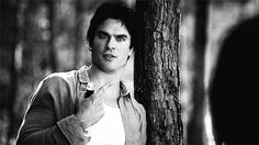 vampire diaries meme this is the face I make when I don't understand you - Bing Images  Damon is a comedian